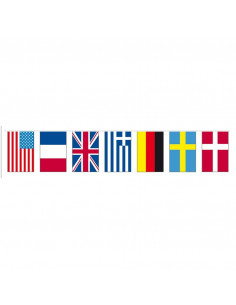 Bandera decoracion fiestas plastico Internacional