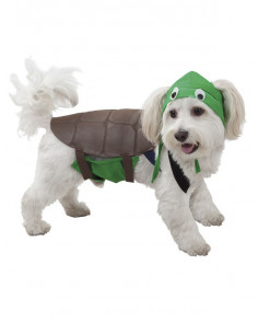 Disfraz de tortuga para perro